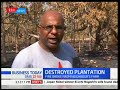 Business Today - 15th March 2018 - Wanton destruction of forest continues in North Rift