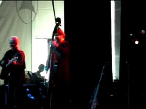 VOGEL B.Genius electric Upright Bass played at a Farfarello Concert by Urs Fuchs