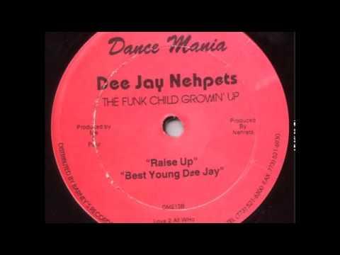 DJ Nehpets - Higher Learning (Paul Johnsons Nature Mix)