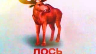 Лесные животные, животные средней полосы. Развивающее видео для детей