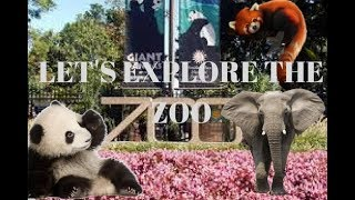 Adventure in Smithsonian Zoo