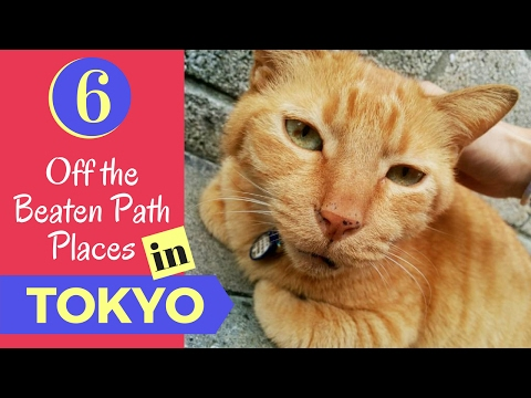 6 Off the Beaten Path Places in Tokyo