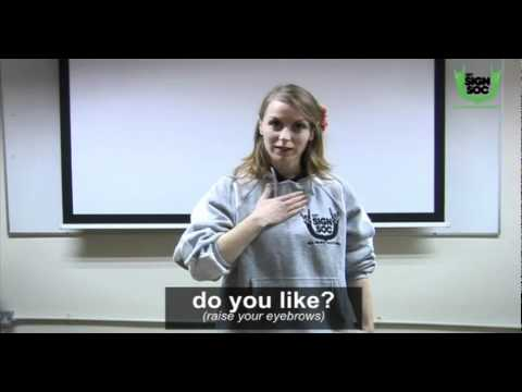 Basic Phrases in Irish Sign Language 01