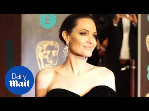 Angelina Jolie walks the red carpet with human rights activist - Daily Mail