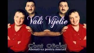 COSTI IONITA & VALI VIJELIE & ADRIAN MINUNE - PLECAT DEPARTE (OFFICIAL TRACK)
