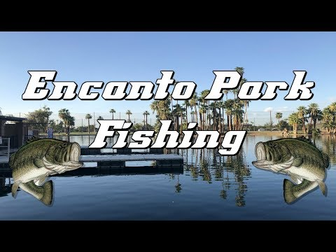 Encanto Park Bass Fishing & How To Deal With A Gut Hooked Fish