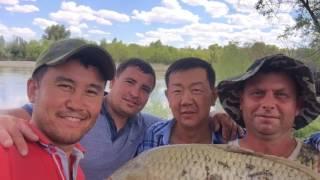 Рыбалка в Алматинской области, низовье р.Каратал