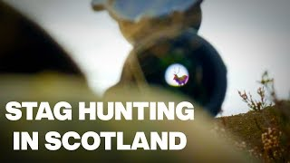 Stag Hunting in Scotland