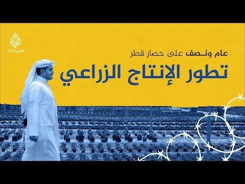 الاقتصاد القطري في مواجهة الحصار- الإنتاج الزراعي  - نشر قبل 17 ساعة