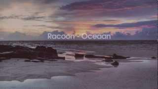 Racoon - Oceaan (uit de film