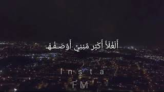 انتي اجمل حب وحساسي وشعور/ حلات واتس اب 2019