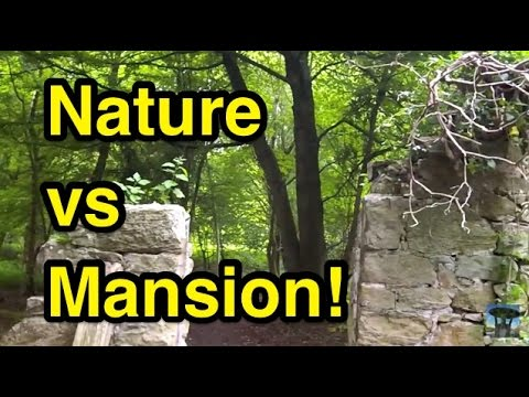 Amazing Nature Reclaiming Old Mansion