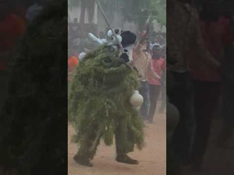 Adazi Nnukwu masquerade festival(8)