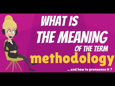 What is METHODOLOGY? What does METHODOLOGY mean? METHODOLOGY meaning,d definition & explanation