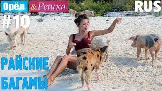 #10 Райские Багамы. Орёл и Решка. Рай и Ад. RUS