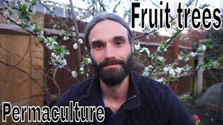 Growing fruit trees, examples, rootstocks, choices, varieties, propagation etc.