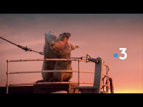 France 3 'Marmots' Idents (2018) (HD)