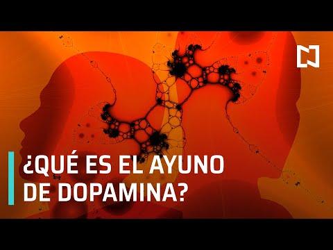 ¿Qué es el ayuno de dopamina? - Hora 21
