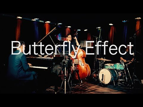 Joshua Ginsburg's Butterfly Effect
