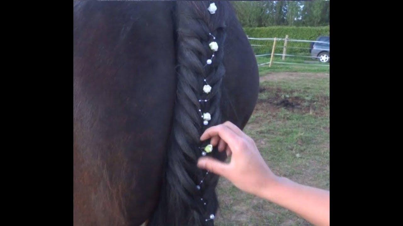 Tuto 15 comment faire une tresse de queue 3 brins cheval poney coiffure horse pony youtube - Tresse queue de cheval ...
