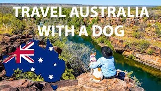 Travelling With A Dog - Road Trip Australia Podcast 4