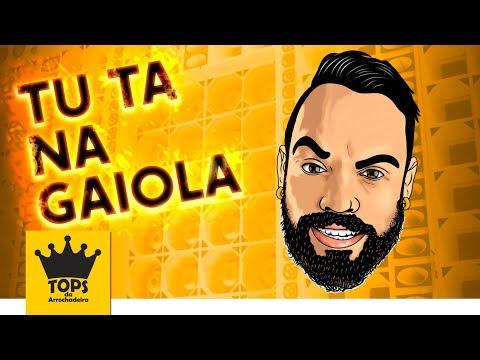 Tu Ta Na Gaiola - Mc Dig - Versão (Tops da Arrochadeira)