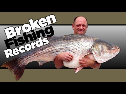 Missouri Record Fish Stories -  Striped Bass
