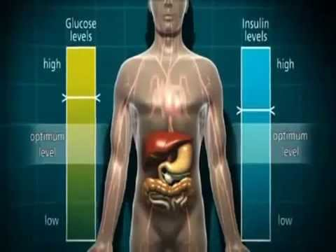 Diabetes Effects on Body In Animation 3D Explained