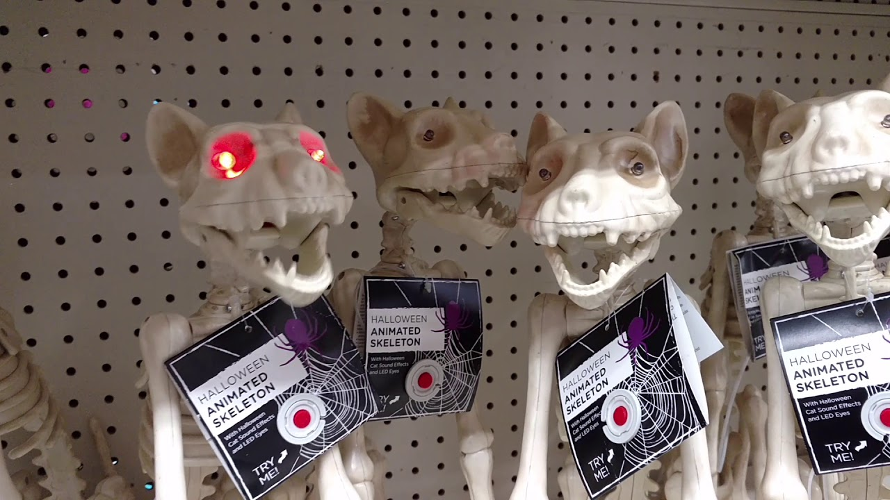spooky halloween props 2017 animated skeleton dolls cats dogs fish lights skulls big lots store - Spooky Halloween Store