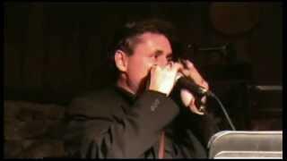 Orange Blossom Special - Traunstein Live 2011 - Johnny Cash Revival 05.