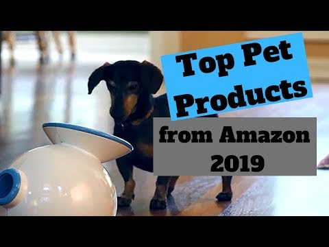 Top Pet Products from Amazon 2019