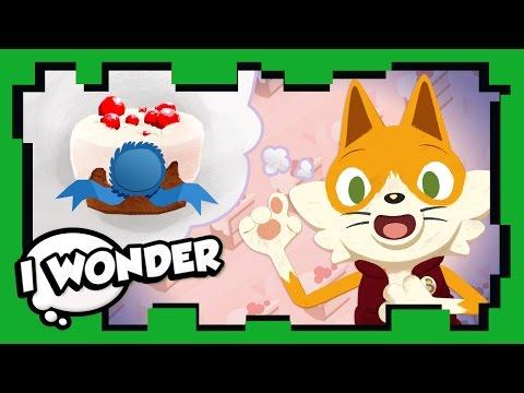 I Wonder - Episode 23 - The Best Food Ever! - WONDER QUEST