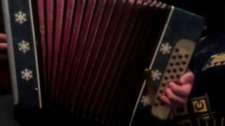 Безупречное исполнение любителя на гармони. Песня