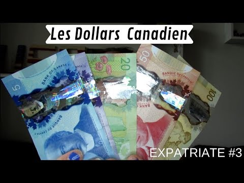 BE - AN EXPATRIATE #3 - LES DOLLARS CANADIEN