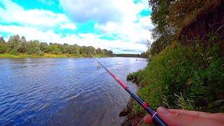 Как я нахожу места на реке Ловля щуки и судака в сентябре на спиннинг Рыбалка на джиг