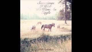 Bill Callahan - The Wind And The Dove