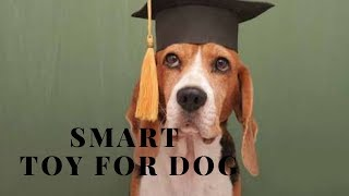 How To Make Smart Toy For Dog