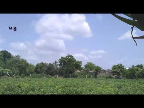 Farm work Mk8photography