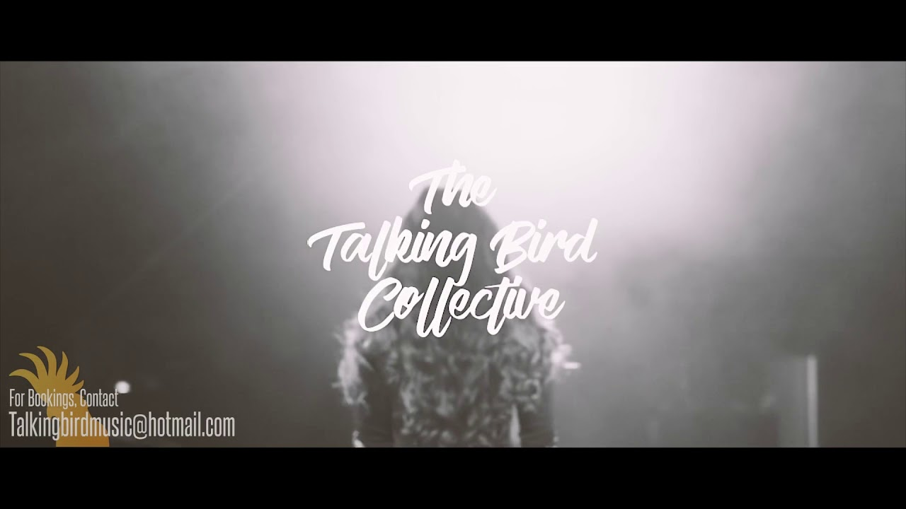 The Talking Bird Collective - Showreel 2018
