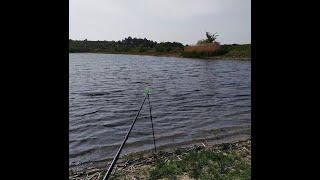 ЗАЧЕМ я сожрал КАМЫШ Двухчасовая ТРУДОВАЯ рыбалка после РАБОТЫ