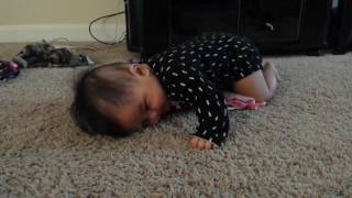 5 month old trying to crawl