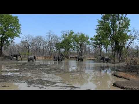 02 malawi a jezero hvezd cz1