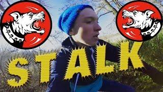 Stalk: Нашли В Лесу Заброшенную Военную Часть/Бегеам от охраны.И от Собак