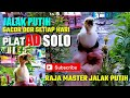 Jalak Putih Gacor Ampuh Untuk Masteran Jalak Putih Jalak Suren Jalak Kebo Agar Gacor  Mp3 - Mp4 Download