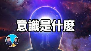 【震撼】史上最難話題,意識_|_老高與小茉_Mr_&_Mrs_Gao