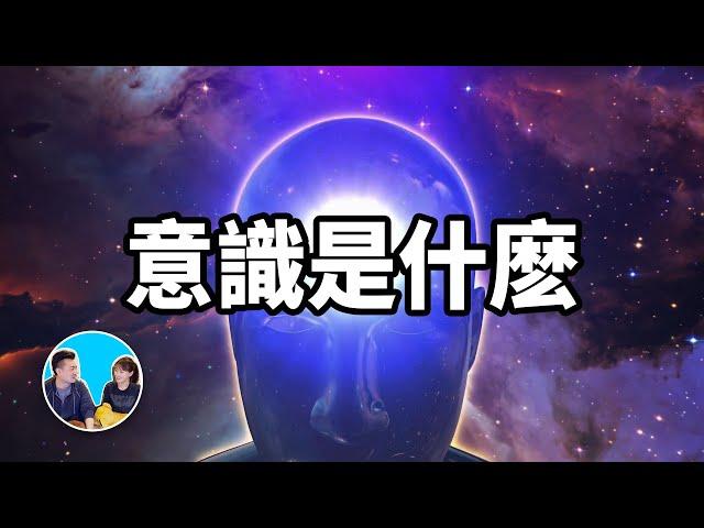 【震撼】史上最深奧的話題,意識 | 老高與小茉 Mr & Mrs Gao