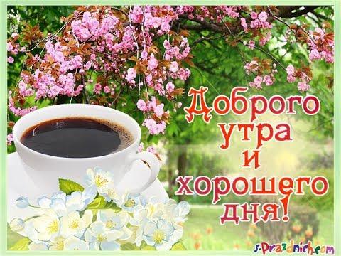 ПОЖЕЛАНИЯ С ДОБРЫМ УТРОМ.ХОРОШЕГО ДНЯ!!