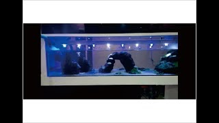 Lampu aquarium sederhana yg bisa di nyalakan dengan charger Hp & Powerbank