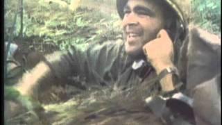 Patrick Brady, Medal of Honor, Vietnam War