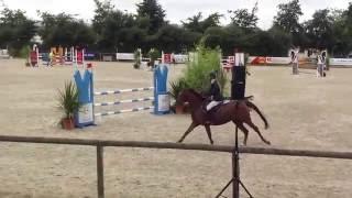 UPSY DAISY DU BUHOT - NORMANDIE HORSE SHOW 2016 - AS PONEY 2D